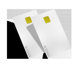 存储卡 - 龙杰智能卡有限公司
